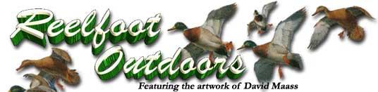 Reelfoot Lake Outdoors- hunting, fishing and eagle watching